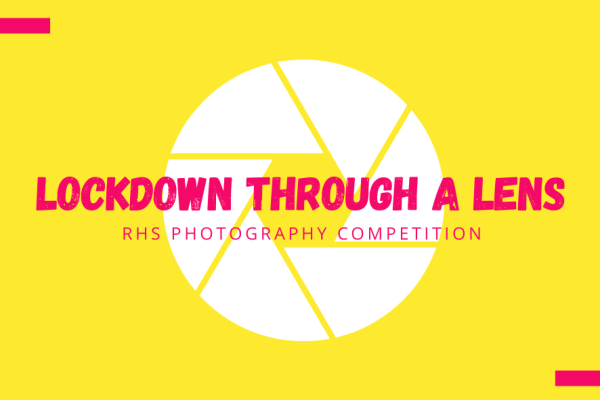 RHS Lockdown through a Lens