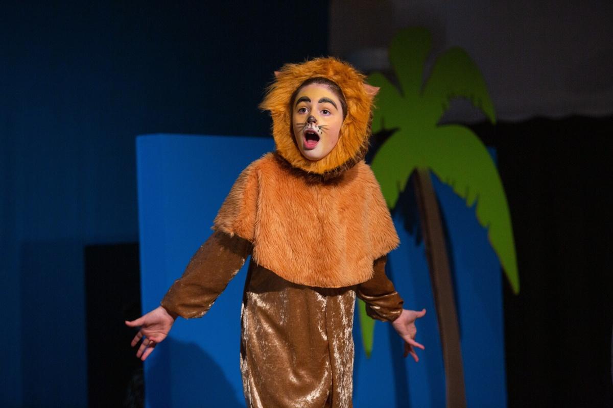 rhs-ps-madagascar-lion