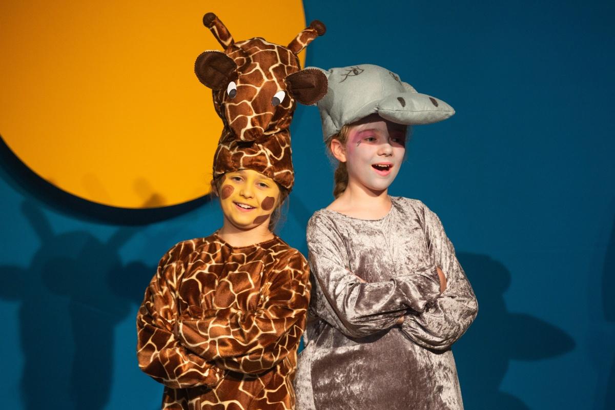 rhs-ps-magagascar-giraffe
